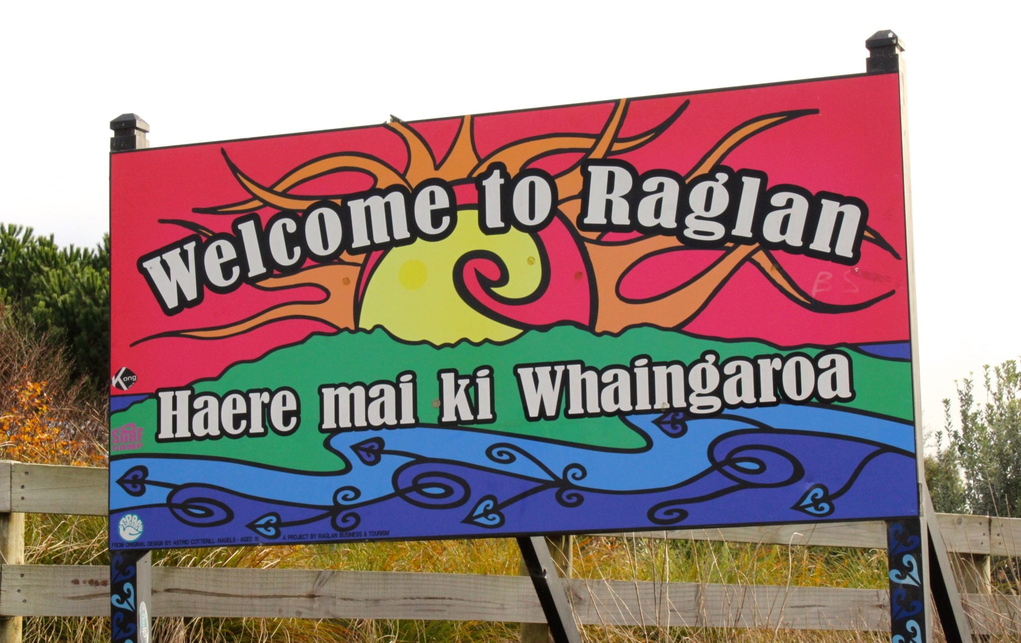 Raglan Surf Trip Live Swell