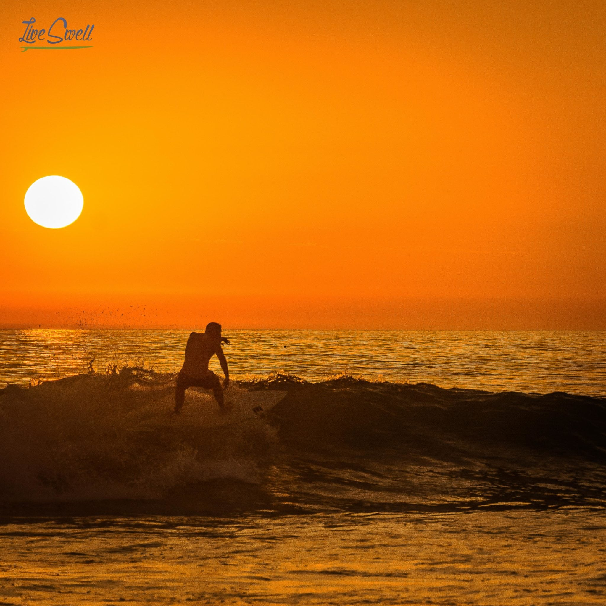 Mike Live Swell San Diego Mission Beach Sunset Surfing