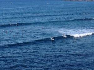 Scorpion bay surfing